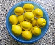 Limones en un cuenco con agua Foto de archivo
