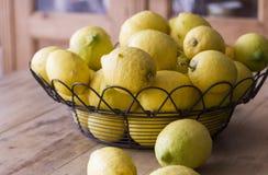 Limones escogidos del jardín Foto de archivo