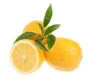 Limones frescos Fotos de archivo libres de regalías