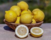 Limones frescos Imagen de archivo libre de regalías