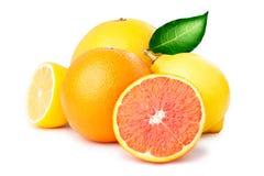 Limones, naranjas y cales Imagen de archivo libre de regalías