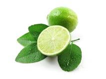 Limones verdes con las hojas Fotos de archivo