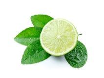 Limones verdes con las hojas Imagen de archivo