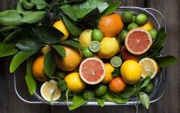 Limones y cal fotos de archivo libres de regalías