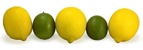 Limones y cales Imágenes de archivo libres de regalías