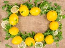 Limones y ensalada verde Foto de archivo libre de regalías