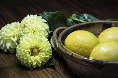 Limones y flores Imágenes de archivo libres de regalías