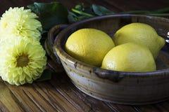 limones y flores amarillas Foto de archivo