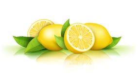 Limones y hojas verdes aislados en blanco imagenes de archivo