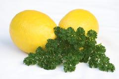 Limones y perejil foto de archivo