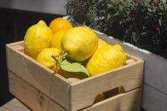 Limoni ammucchiati in cassa di legno al mercato di strada Immagine Stock Libera da Diritti