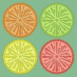 Limoni, aranci e limette Immagini Stock Libere da Diritti