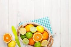 Limoni, aranci e limette Arance, limette e limoni Immagini Stock