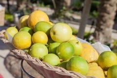 Limoni in cestino Limone alla linea del buffet nel ramo dell'hotel Merce nel carrello fresca del limone e colpo del fuoco seletti Immagine Stock