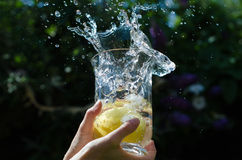 Limoni che spruzzano nell'acqua Fotografia Stock Libera da Diritti