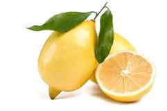 Limoni con la foglia Fotografia Stock