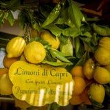Limoni con testo Fotografia Stock