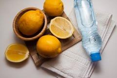 Limoni della vitamina sul piatto Immagini Stock