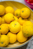 Limoni di Yuzu del primo piano in una ciotola Fotografia Stock Libera da Diritti