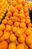 Limoni e limetta Fotografia Stock