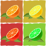 Limoni e limetta Royalty Illustrazione gratis