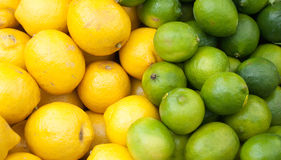 Limoni e limette Fotografia Stock