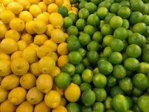 Limoni e limette su esposizione Fotografie Stock Libere da Diritti