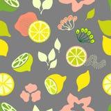 Limoni e stampa delle calce Fotografia Stock