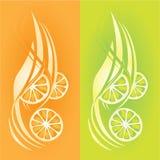 Limoni ed aranci illustrazione di stock