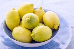 Limoni freschi Immagine Stock Libera da Diritti