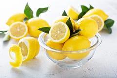 Limoni freschi in una ciotola di vetro Immagini Stock Libere da Diritti