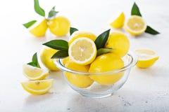 Limoni freschi in una ciotola di vetro Immagine Stock Libera da Diritti