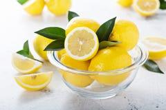 Limoni freschi in una ciotola di vetro Immagini Stock