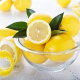 Limoni freschi in una ciotola di vetro Fotografia Stock