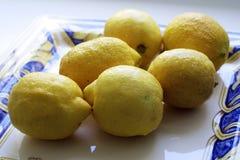 Limoni gialli Immagini Stock Libere da Diritti