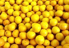 Limoni gialli freschi Fotografie Stock Libere da Diritti
