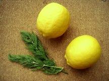 Limoni gialli freschi e un ramoscello di aneto sui precedenti del sughero fotografia stock