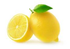 Limoni isolati del taglio immagine stock