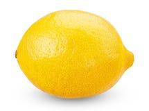 Limoni maturi freschi isolati su fondo bianco Immagine Stock Libera da Diritti