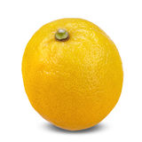 Limoni maturi freschi isolati su fondo bianco Fotografia Stock