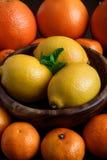 Limoni in piatto di legno con i mandarini, arance e foglie della menta sulla macro scura del primo piano del fondo Fotografia Stock