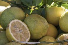 Limoni selezionati freschi al mercato con le foglie Fotografia Stock