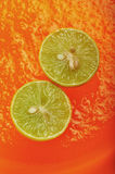 Limoni su gelatina arancio 1 Immagini Stock