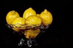 Limoni su una ciotola di vetro Immagini Stock Libere da Diritti