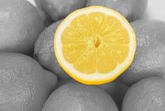 Limoni succosi freschi con le metà sui precedenti bianchi Fotografia Stock