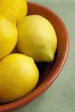 Limoni in una ciotola Fotografia Stock