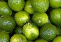 Limoni verdi Fotografia Stock Libera da Diritti