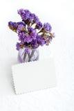 Limonium flowers. Royalty Free Stock Photos