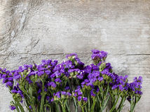 Limonium sinuatum, wavyleaf sea-lavender Stock Photography