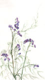 Limonium watercolor painting. The hand painted watercolor of limonium with grass Stock Photography